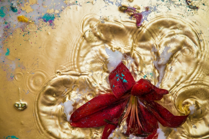 Flowers Milk Gold-32